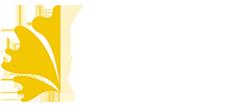logo-cabecera-V2
